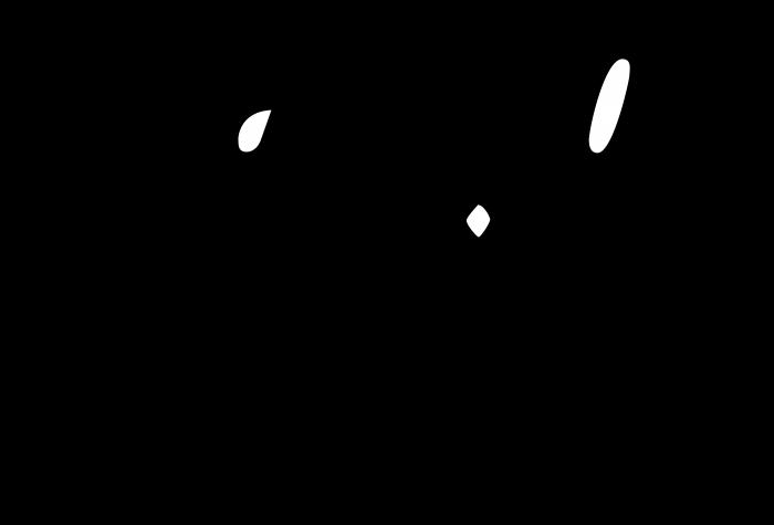 Castrol logo racing