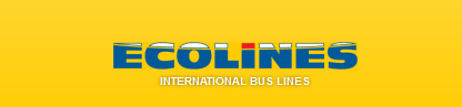 Ecolines logotype and slogan, yellow