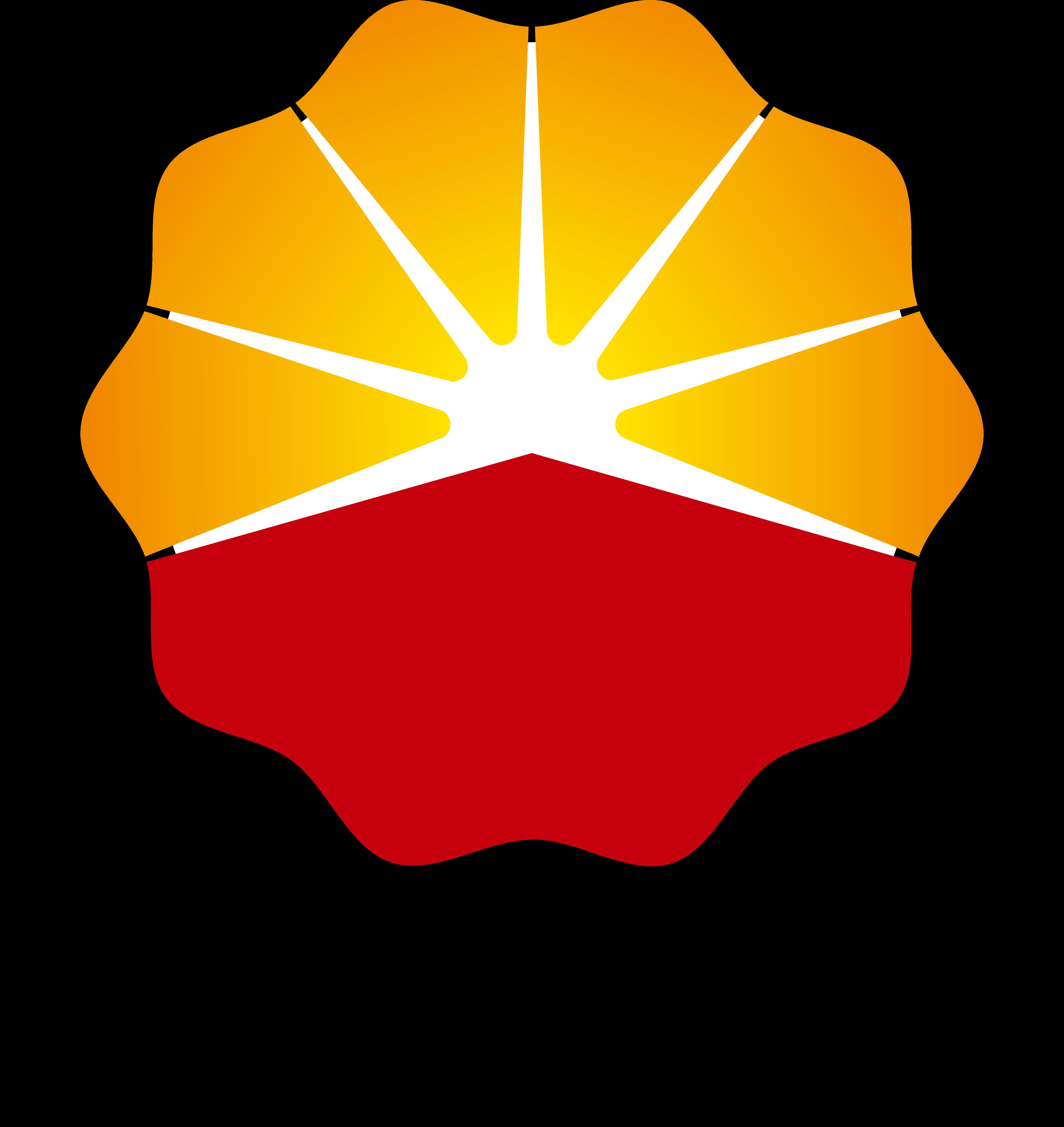 Petrochina logo, logotype, emblem