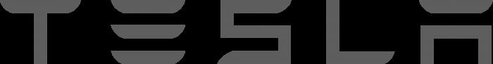 Tesla logo silver