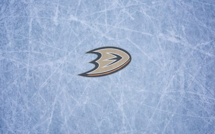 Anaheim Ducks wallpaper with logo on it, widescreen 1920x1200, 16x10