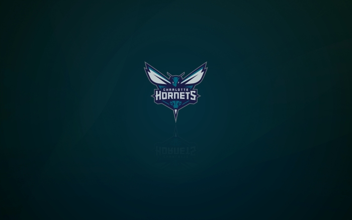 Charlotte Hornets wallpaper with logo, widescreen - 1920x1200, 16x10