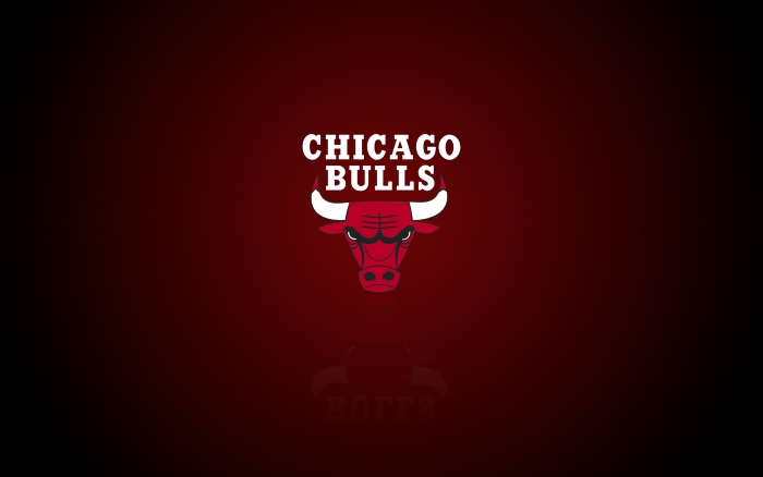Chicago Bulls wallpaper with logo on it, widescreen, 1920x1200 px