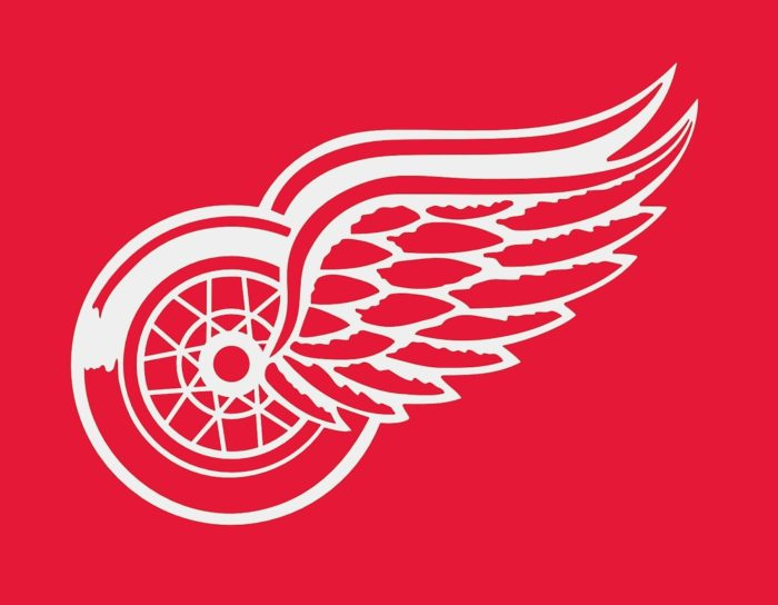 Detroit Red Wings emblem, logo, red-pink bg