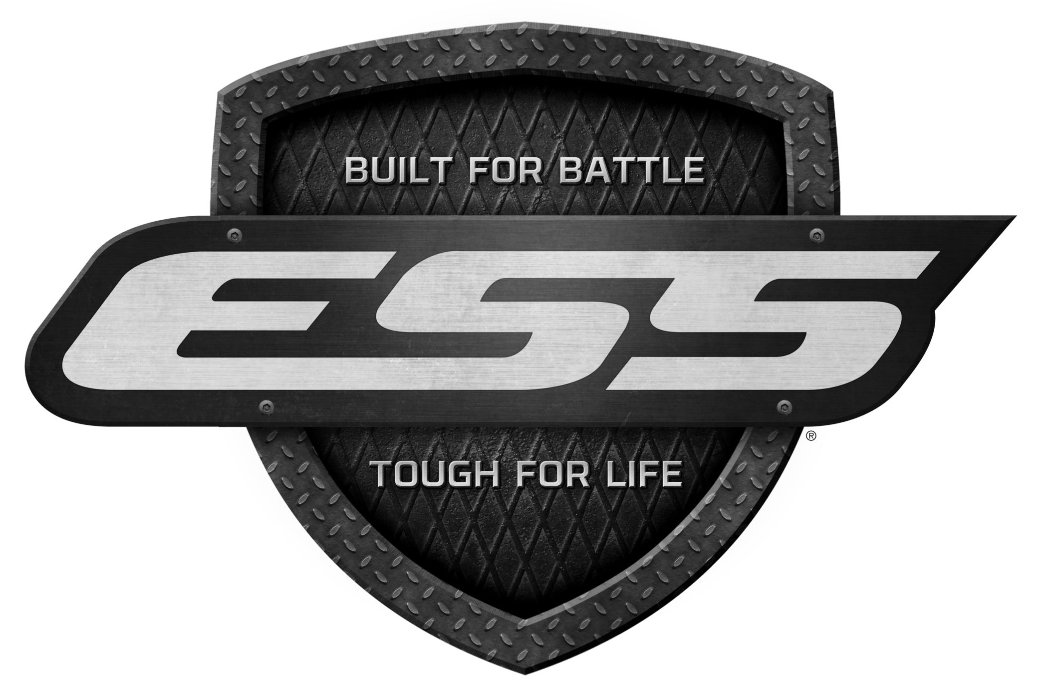 ESS logo (Eye Safety Systems)