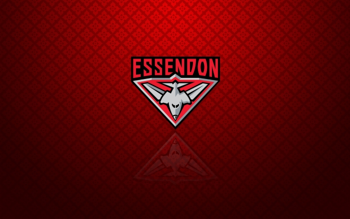 Essendon Bombers wallpaper, background with logo - 1920x1200px