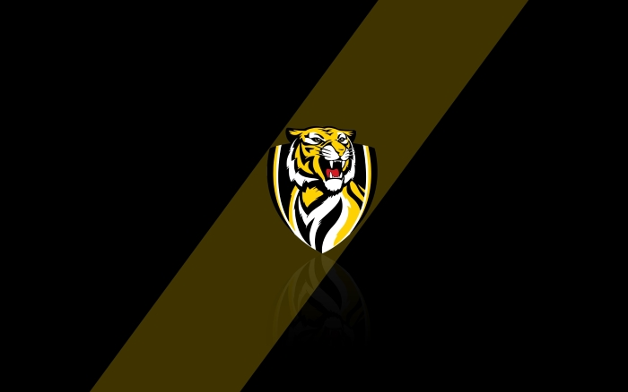 Richmond Tigers desktop wallpaper, background with team logo - 1920x1200px