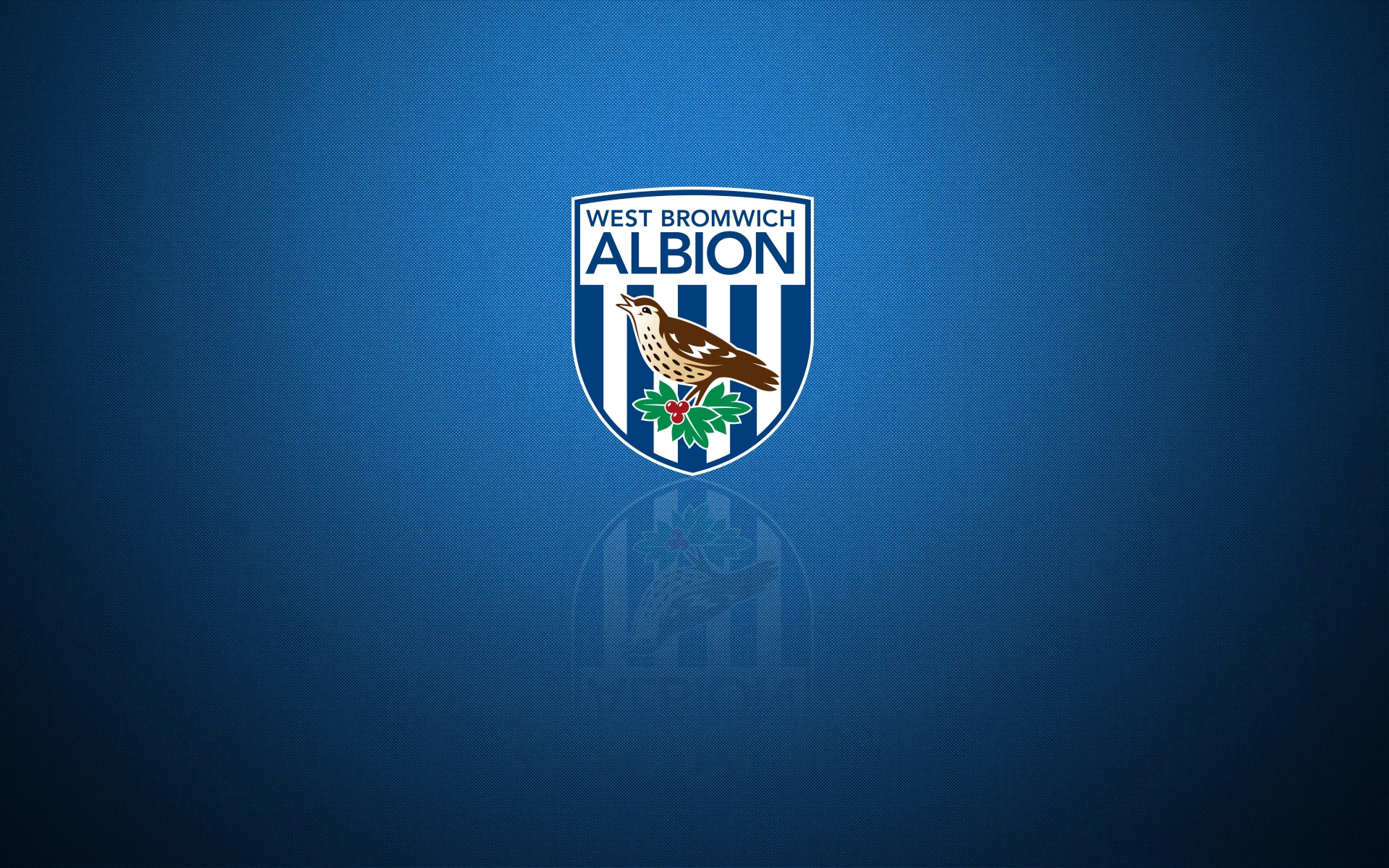 West Bromwich Albion FC: The 25 Year Record, 1972-97 (The 25 year record series)