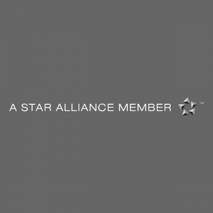 A Star Alliance Member logo cube