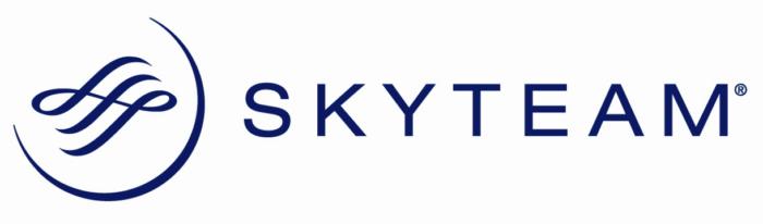 Skyteam logo, horizontal