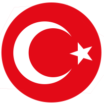Turkey national football team logo
