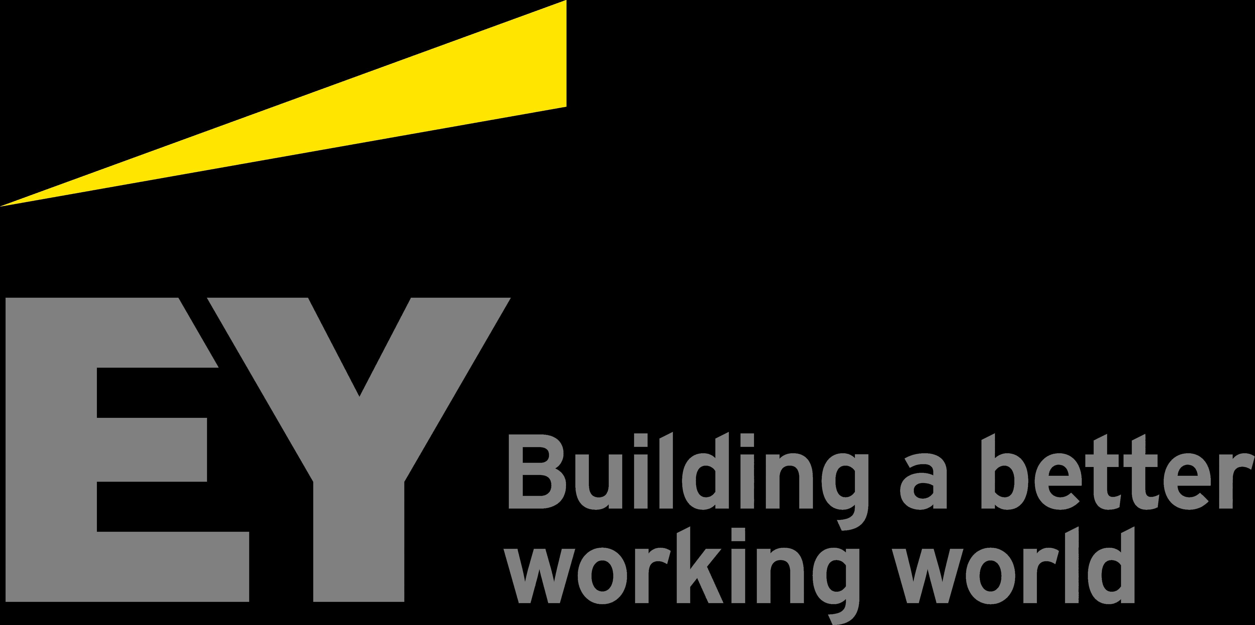 Резултат с изображение за logo ey png