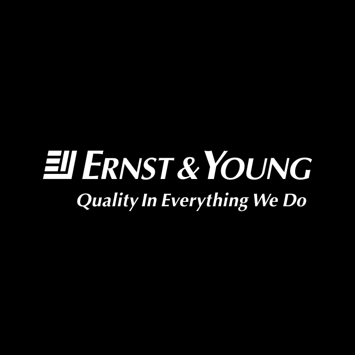 Ernst Young logo cube