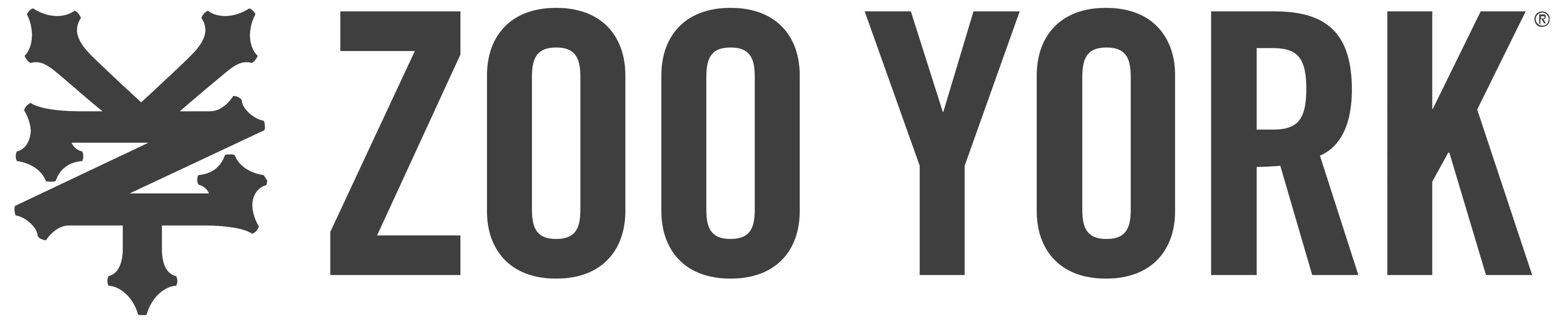 Zoo york skateboards logo