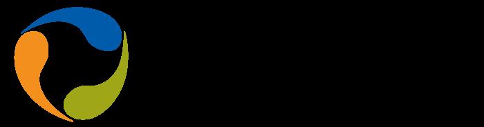 Future Energy Corporation logo