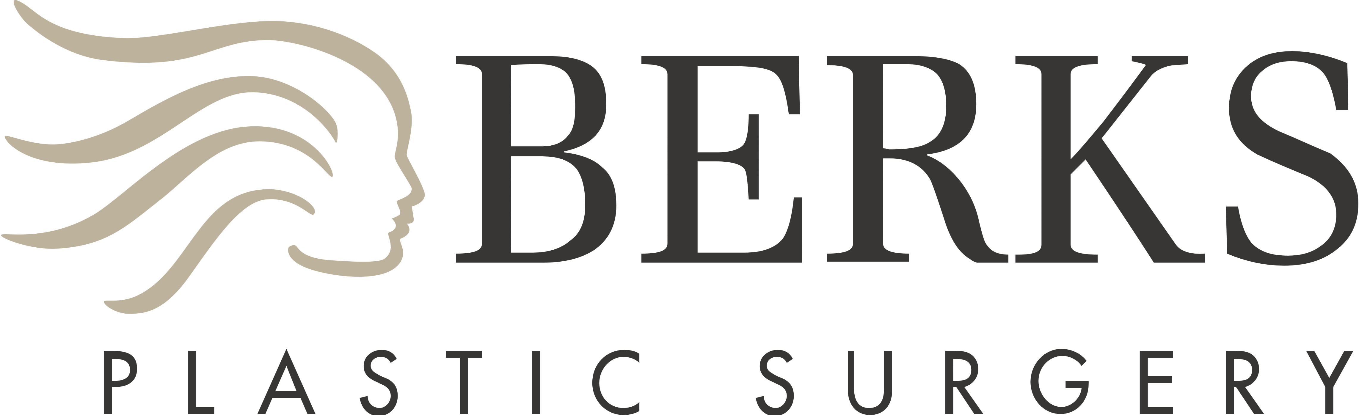 Berks Plastic Surgery Logos Download