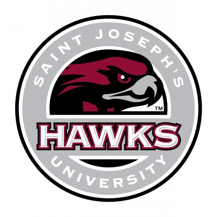 Hawks logo grey