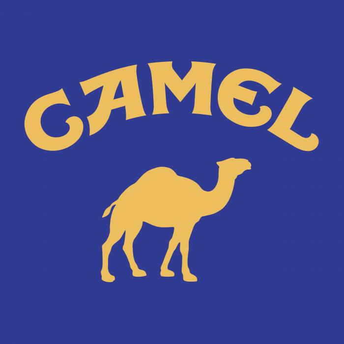 Camel logo violet