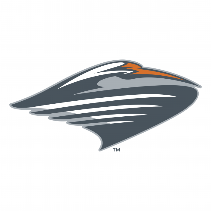 Miami Hurricanes logo TM