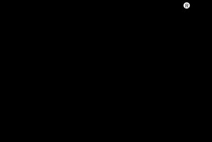 Arena logo black