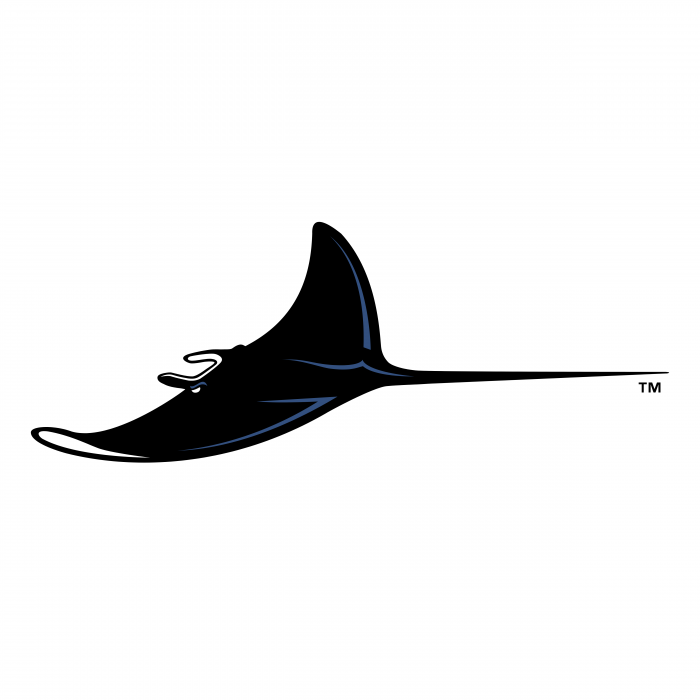 Tampa Bay Devil Rays logo black