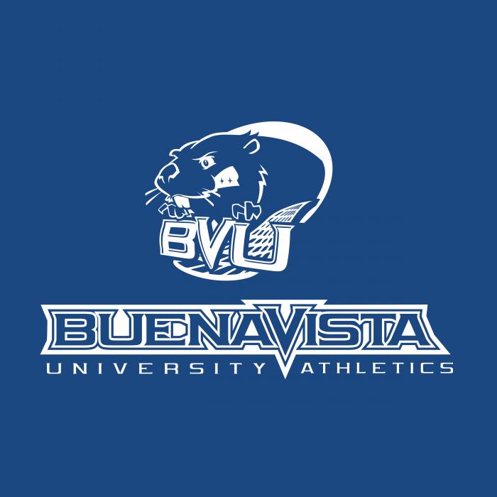 BVU Beavers logo cube