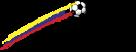 Copa logo mustang