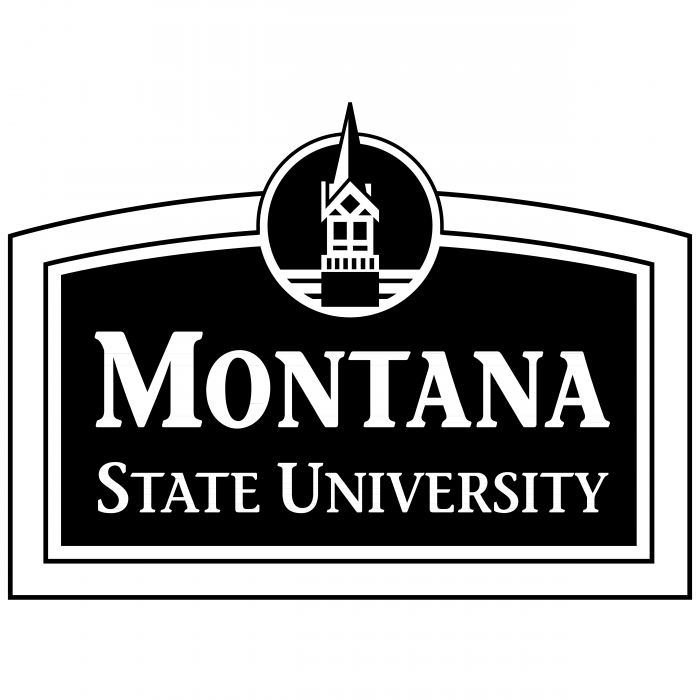 Montana State University logo blue