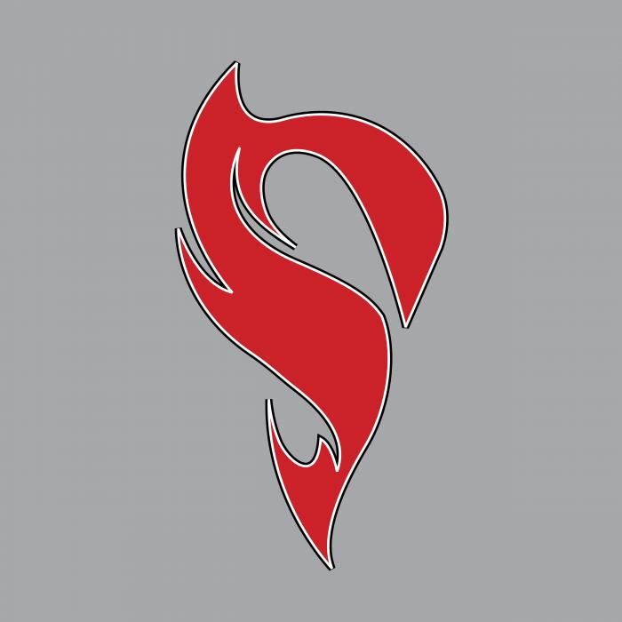 STX Lacrosse logo grey