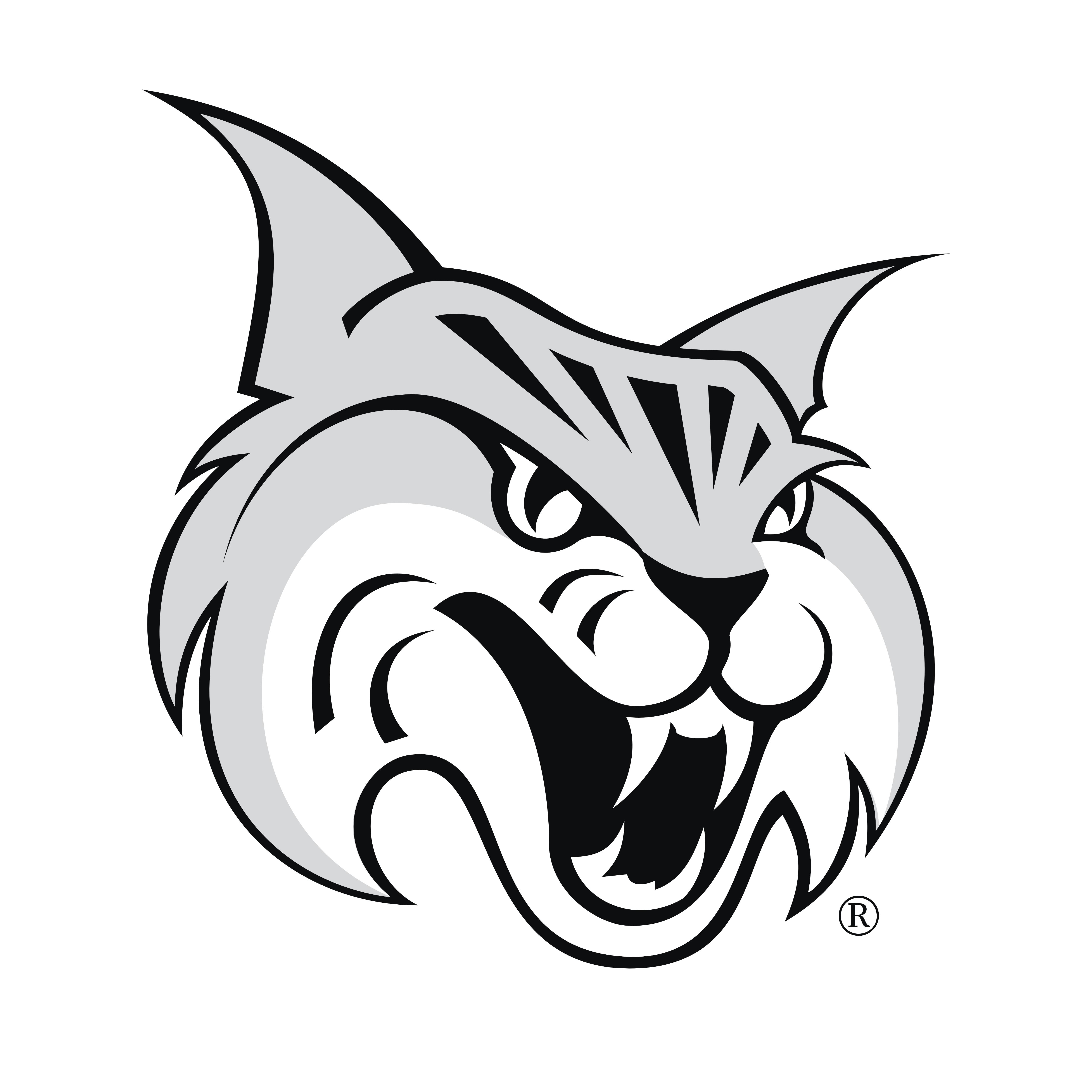 Bobcats Logos Download