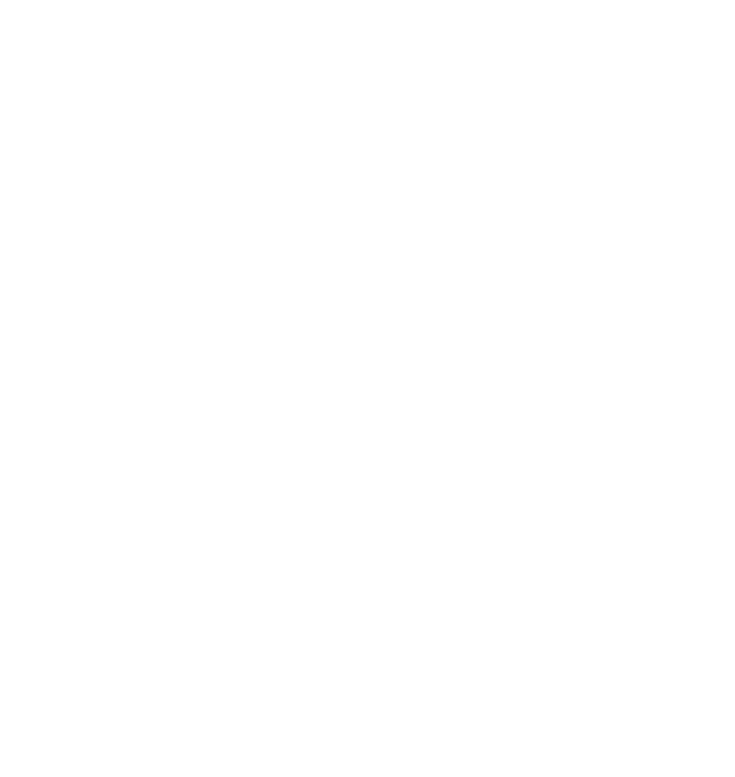 Nimiq Logo white vertically