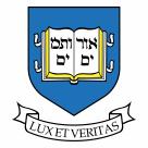 Yale Bulldogs logo blue