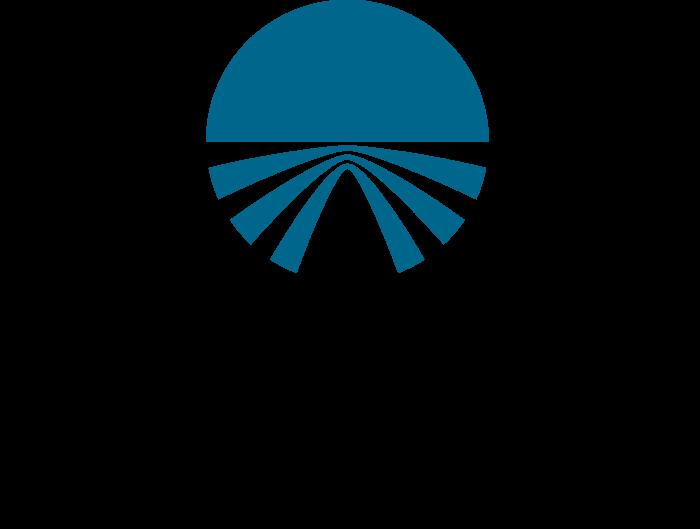 Bay Networks logo blue