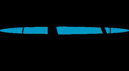 American Registry for Internet Numbers Logo
