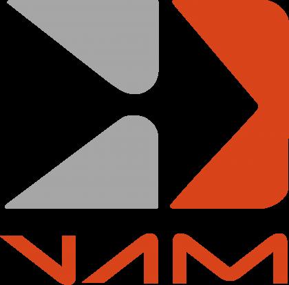 Vehiculos Automotores Mexicanos Logo