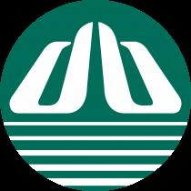Denway Motors Logo