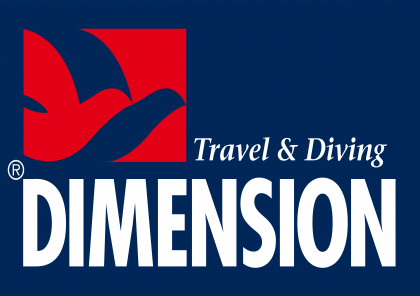 Dimension Travel in Style Logo