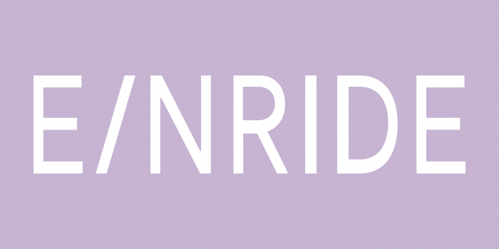 Einride Logo new