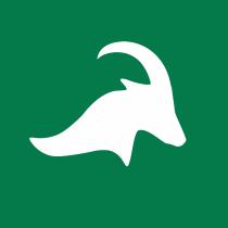 Einride Logo old
