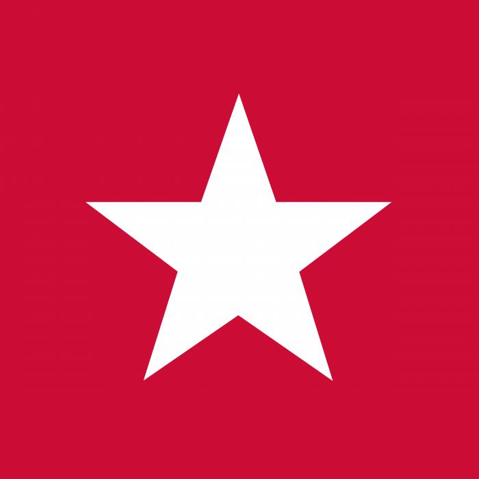 Guvera Logo star