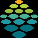 Northern Light Health Logo