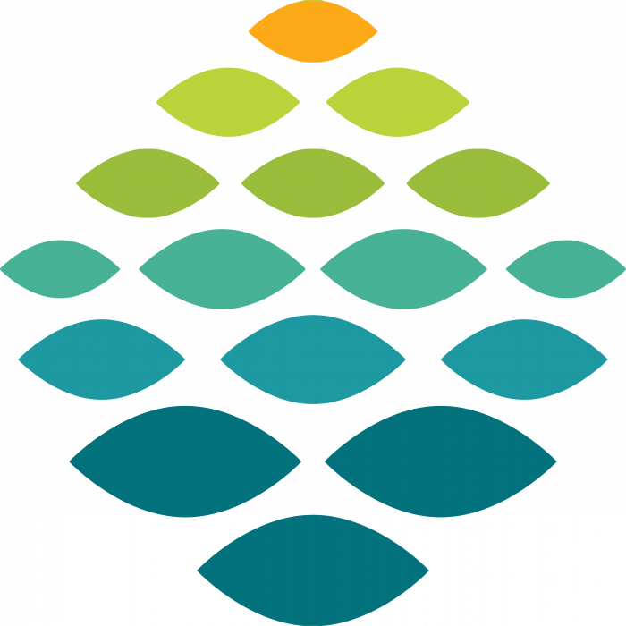 Northern Light Health Logo