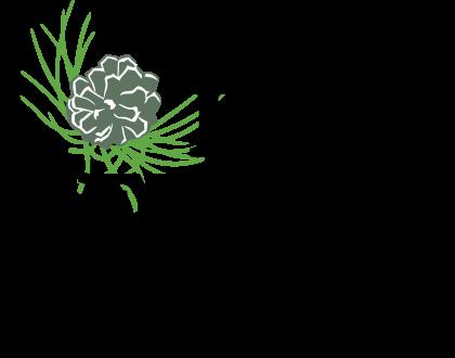 Pine Needle Logo