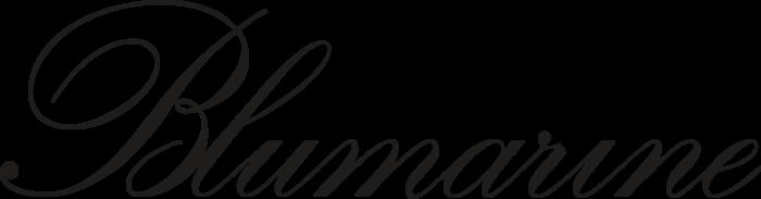 Blue Marine Logo