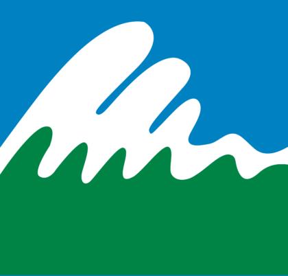Paos Holdings Logo