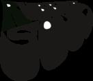 Rubber Soul Logo