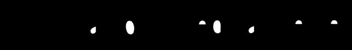 Catholic Medical Center Logo old