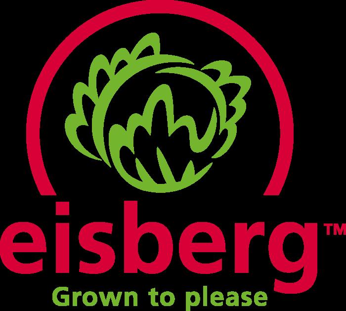 Eisberg Logo old