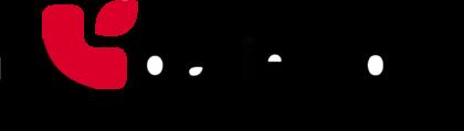 Patientory (PTOY) Logo