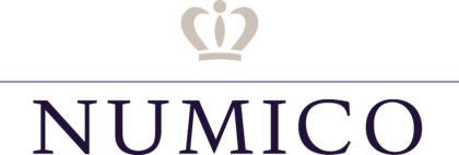 Royal Numico N.V. Logo